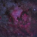 NGC 7000 & Co with Samyang 135,                                Göran Nilsson