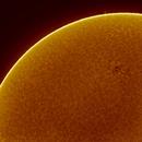 sun in halpha,                                Markus Schadlinger