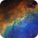 IC2177 Seagull Nebula,                                Liangwt