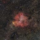 IC 1396,                                Máximo Bustamante