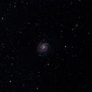 M101 taken with 102mm APO,                                Andrew Burwell