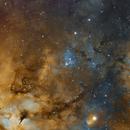 IC1318,                                Peter Jenkins