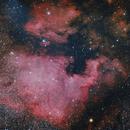 NGC7000 & Pelican,                                Joostie