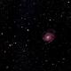 M101 Pinwheel Galaxy,                                Tristram