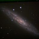 Sculptor Galaxy,                                Robin Clark - EAA imager