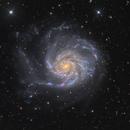 M101,                                Vadim Kozatchenko