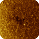 AR2770 in High Res HA (200mm), Inverted, 08-05-2020,                                Martin (Marty) Wise