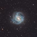 Southern Pinwheel Galaxy - M83 or NGC 5236,                                Martin Junius