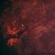 Sadr / Cygnus Butterfly / Gamma Cygni / Crescent w/ DSLR,                                Jeffrey Horne