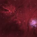 Christmas Tree Nebula,                                avarakin