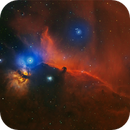 IC 434 Horse Head Nebula,                                Tim Trentadue