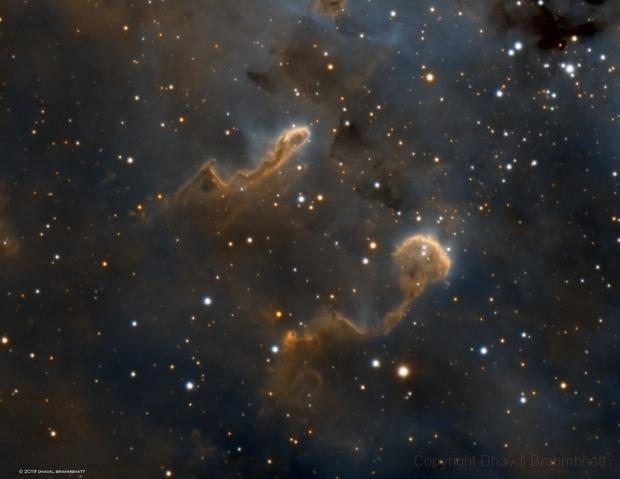 IC 410 Tadpoles,                                Dhaval Brahmbhatt