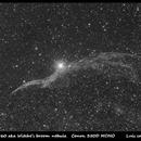 VEIL 350D MONO newt 200mm f4 8x7 min @ 800 ISO_final,                                Luis Campos