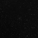 NGC 6834,                                CHERUBINO