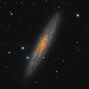 NGC 253 - The Sculptor Galaxy,                                NocturnalAstro