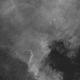 NGC7000 North America Nebula - 2 June 2020,                                Geof Lewis
