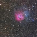M 20 Trifid Nebel,                                mdohr