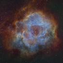 Rosette Nebula Caldwell 49,                                Greg Funderburk