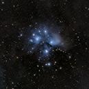 M45 The Pleiades,                                Ted Davis