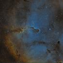 IC1396,                                Vincent