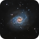 NGC 4535 galaxy,                                Yuriy Mazur