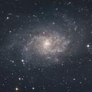 M33 Galaxie du Triangle,                                Werny Michael