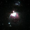 Orion Nebula,                                Tim Rice