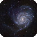 "M101 (Pinwheel Galaxy - UMa) in LRGB - High Resolution 0.57""/px,                                Ben Koltenbah"