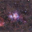 Orion Nebula,                                Darius Kopriva