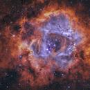 Rosette nebula,                                RichardBoudreau