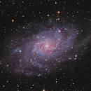 M33  OSC,                                sky-watcher (johny)