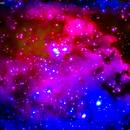 ngc2174  ngc2175  nebulosa nei gemelli   distanza 5.000 mila A.L.,                                Carlo Colombo