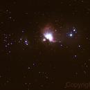 M42 Orion Nebula,                                breid
