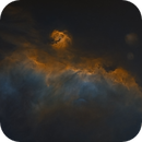 IC2177 aka Seagull Nebula in SHO (Starless version),                                Tommy Lease