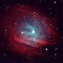 Sh2-313 in Hydra,                                M.J. Post