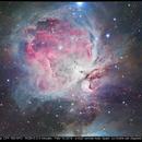 M42 in Orion,                                Andre van Zegveld