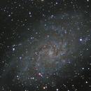 M33,                                alex hayden