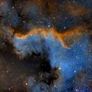 The Cygnus Wall in SHO,                                Michael J. Mangieri