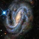 NGC 613 – We're Watching You! (ART),                                Alex Woronow