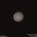 Jupiter #17,                                Molly Wakeling