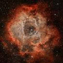 Rosette nebula,                                Waynescave