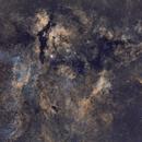 The entire Sadr nebula complex (Gamma Cygnus, Crescent, Propeller, ...),                                Sven Hoffmann