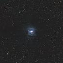 NGC 7023- Iris Nebula,                                Terrance