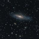NGC7331,                                Carlo Caligiuri