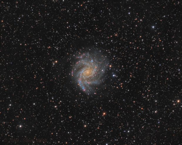Fireworks Galaxy - NGC 6946 in Cepheus,                                Steve Milne