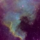 NGC7000 North America Nebula - SHO palette,                                Pam Whitfield