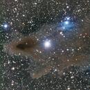 Shark Nebula,                                Unclevodka