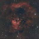 NGC 7822,                                Gérard Nonnez
