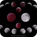 2019 Lunar Eclipse- mosaic,                                William Maxwell