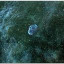 NGC 6888-Nebulosa Crescent,                                Jesús M. Vargas